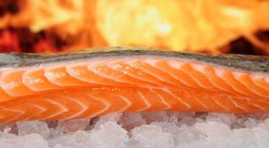 salmon-1238662_1920 (1)