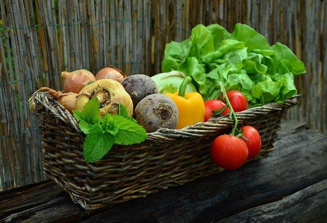 Warum Gemüse für unsere Gesundheit gefährlich werden kann – Lektine in unserer Nahrung